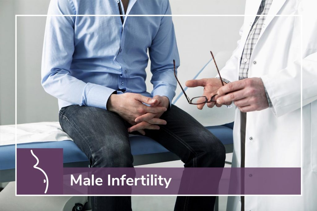 PBN Male Infertility